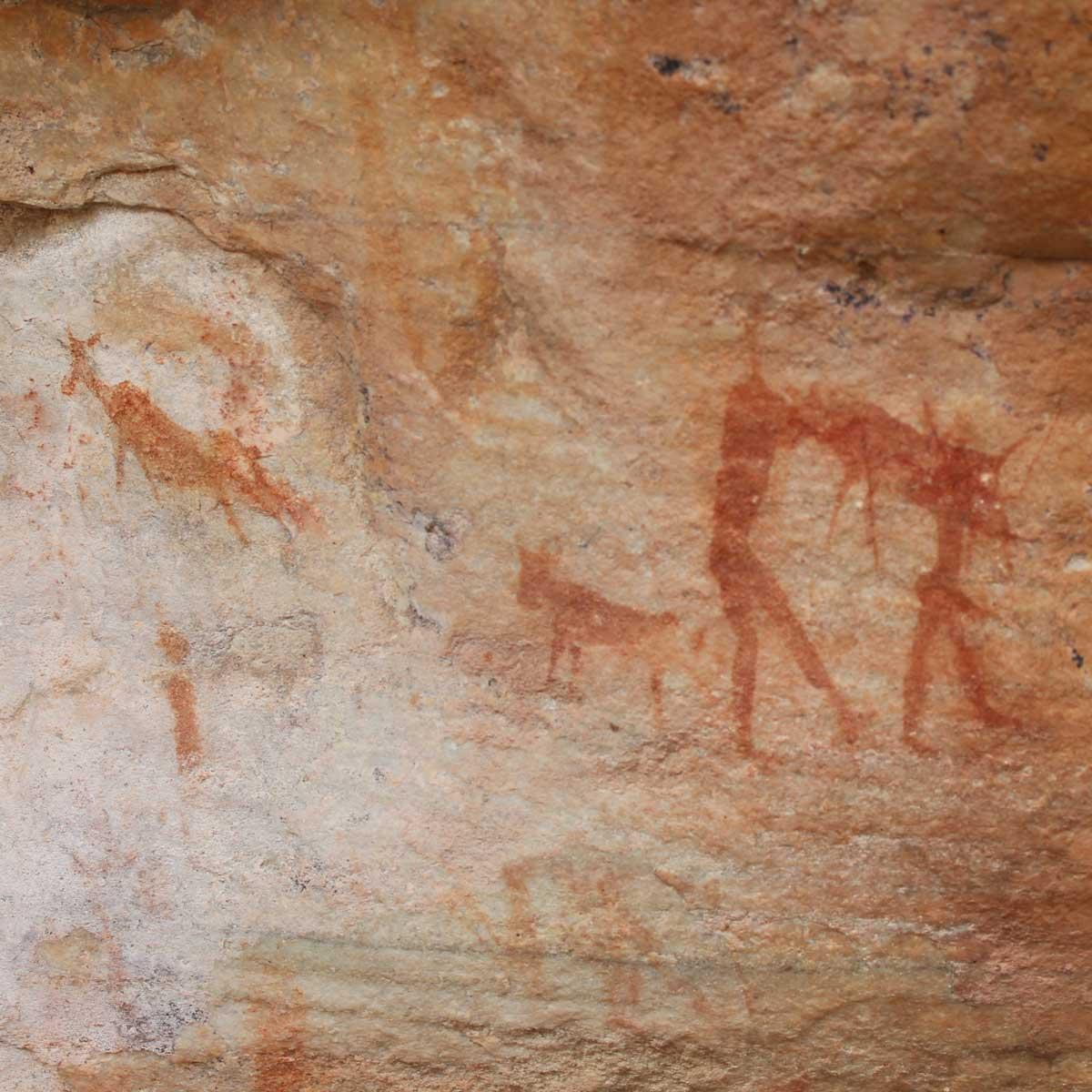 cederbergtours-bushman-painting-tour